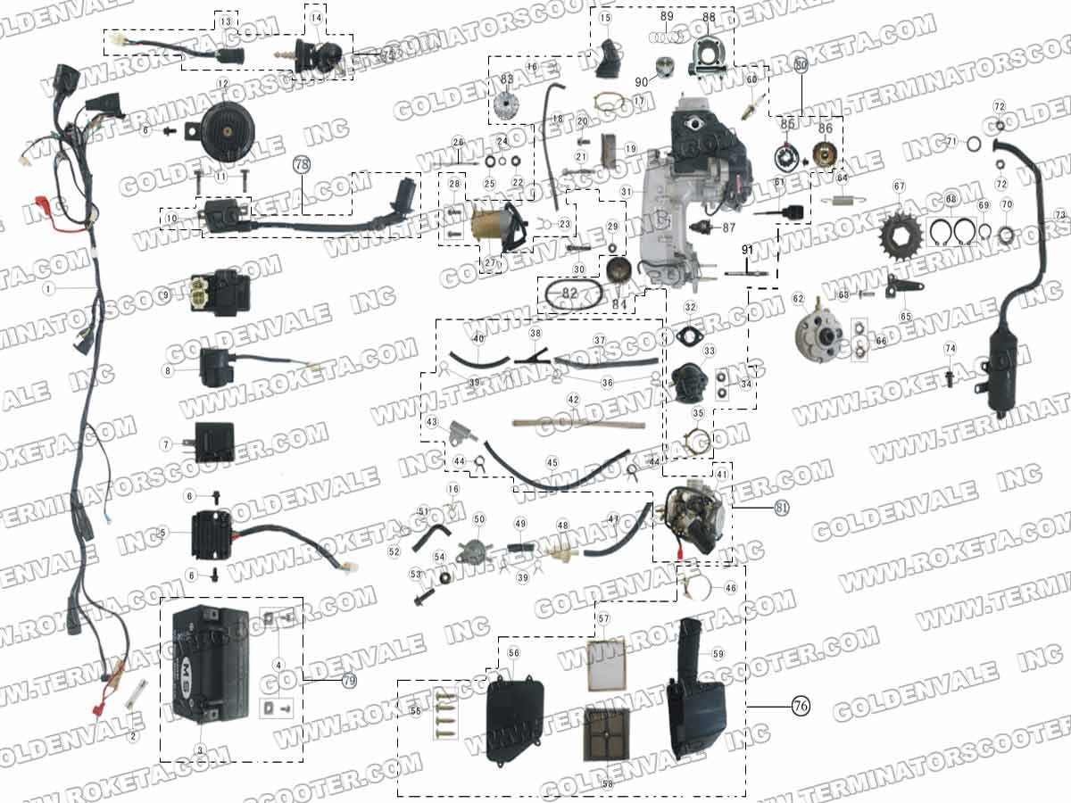 Terminator Mini Bike Wiring All Kind Of Diagrams 50cc Pocket Diagram Wire Imageresizertool Com Cycles Chopper